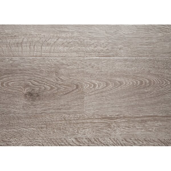 Sand Dollar 7.5 x 48 x 12mm Oak Laminate Flooring in Gray with Moisture Resistant Wax by Chic Rugz