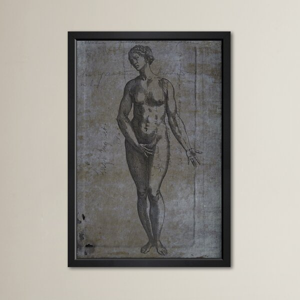 The Female Framed Graphic Art by Astoria Grand