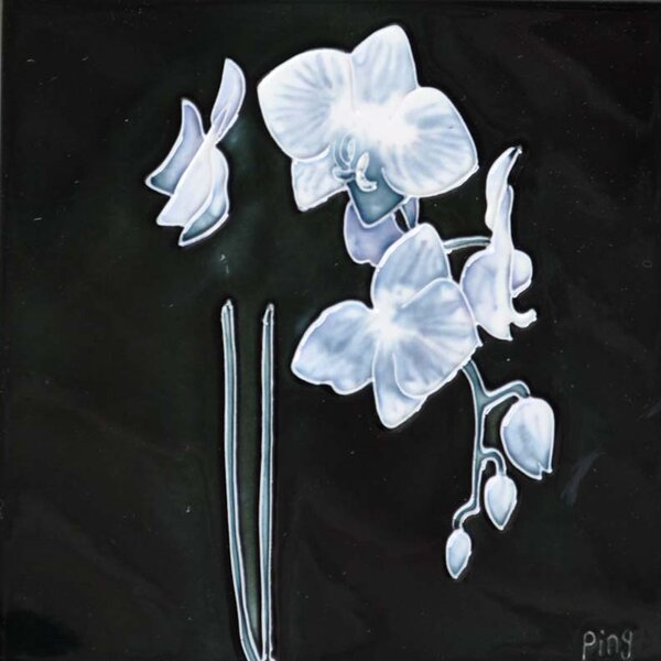 Small White Orchid With Black Background by Continental Art Center