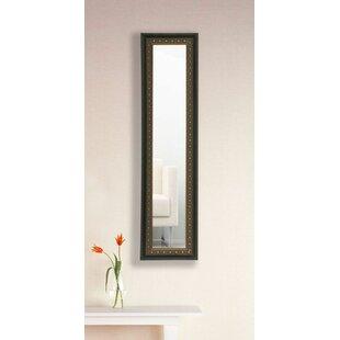 Astoria Grand Derrill Panel Accent Mirror