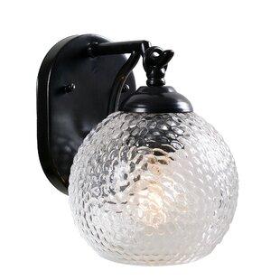 Swiridoff 1-Light Outdoor Wall Lantern