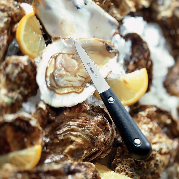 Oyster Knife by Triangle