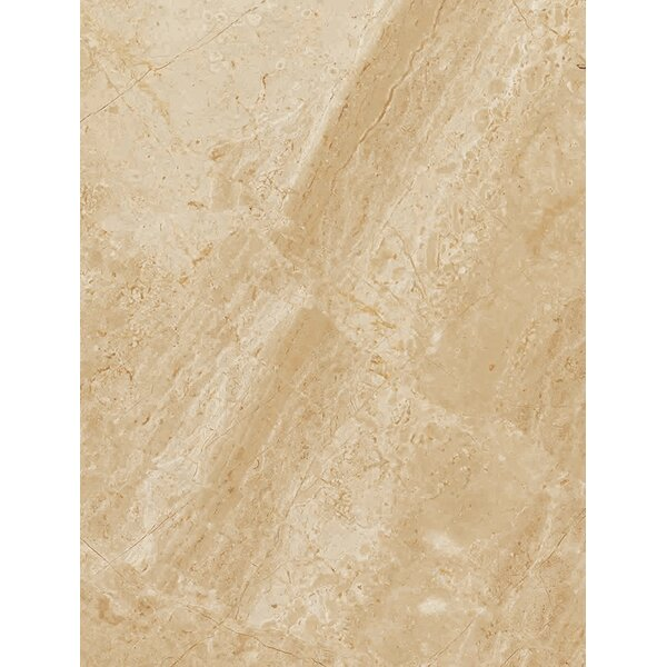 Peyton 10 W x 13 Ceramic Field Tile in Beige by Parvatile