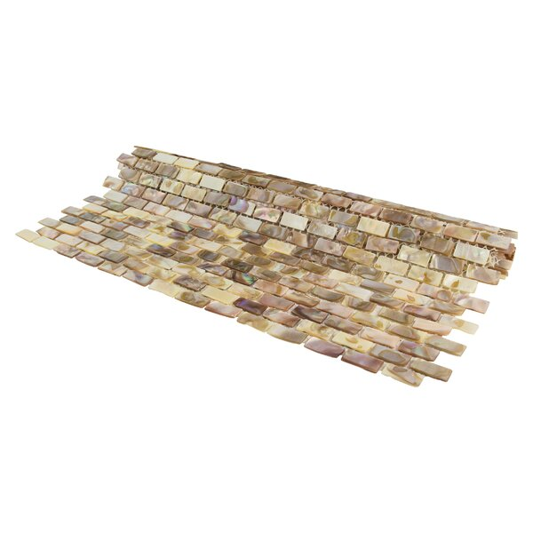 Shore Subway 0.38 x 0.75 Seashell Mosaic Tile in Brown by EliteTile