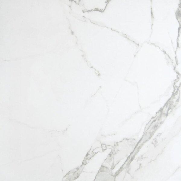 24 x 24 Porcelain Field Tile in Overland Carrara (Set of 5) by Travis Tile Sales