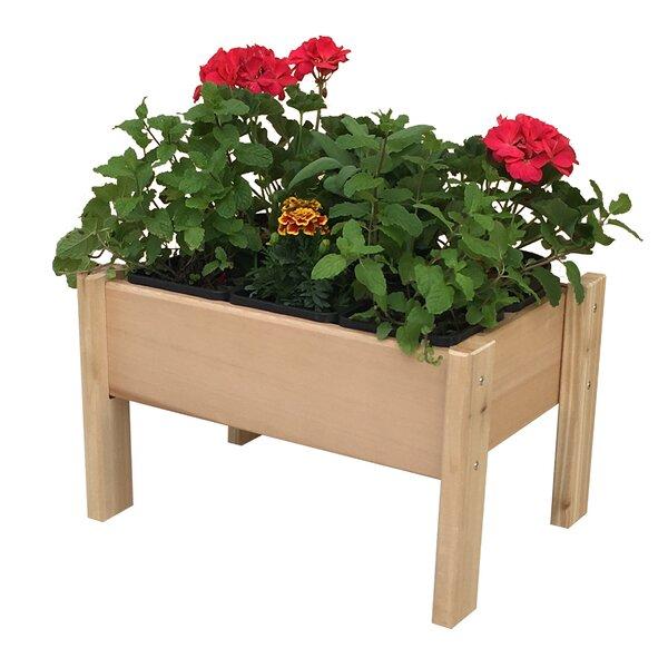 Plantables™ Cedar Raised Garden by Gro Products