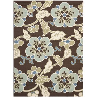 Tierney Chocolate/Aqua Indoor/Outdoor Area Rug by Andover Mills