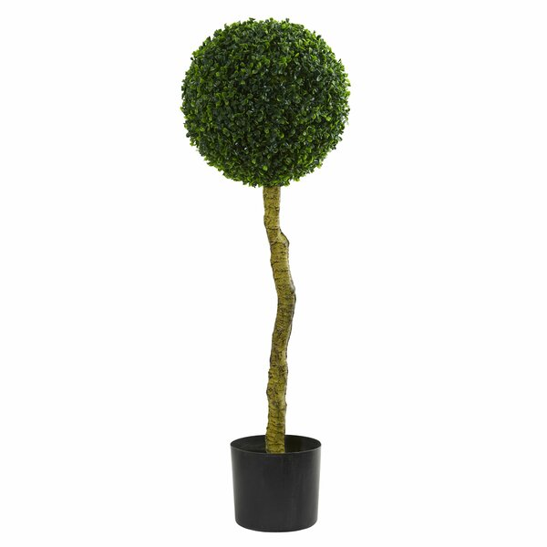 3.5 Boxwood Topiary by Darby Home Co