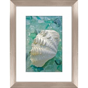 'Sea Glass and Shell' Framed Photographic Print by Beachcrest Home