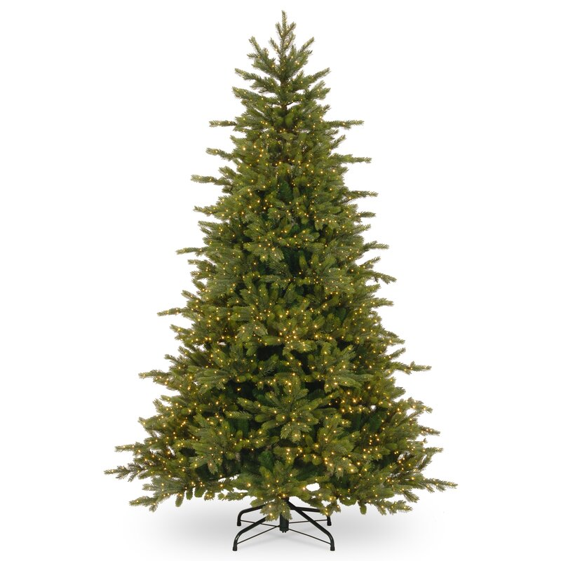 rocky 75 green spruce artificial christmas tree with 3000 warm white lights and stand - White Spruce Christmas Tree