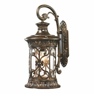 Best Deals Binghamton 1-Light Outdoor Wall Lantern By Fleur De Lis Living
