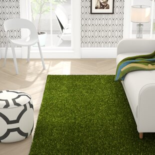 Obadiah Grass Green Indoor/Outdoor Area Rug by Ebern Designs