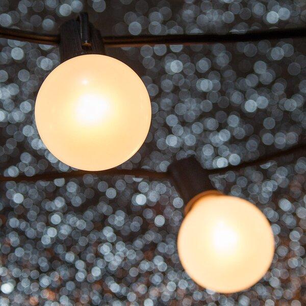 15-Light Globe String Lights by Wintergreen Lighting