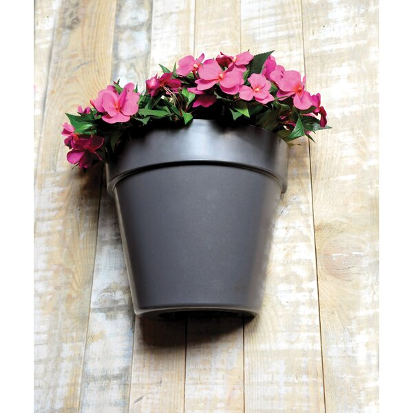 Slesnick Plastic Wall Planter by Winston Porter