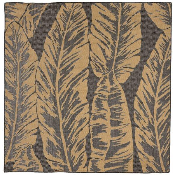 Hunley Banana Leaf Gray/Beige Indoor/Outdoor Area Rug by Highland Dunes