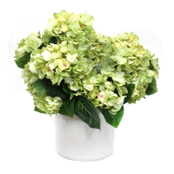 Hydrangeas Flower in Planter by Dalmarko Designs