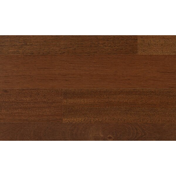 3-1/4 Engineered Chestnut Hardwood Flooring in Brown by IndusParquet