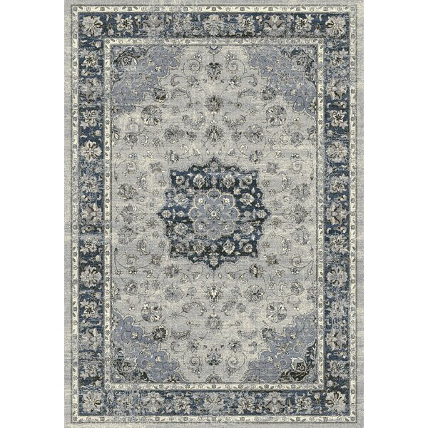 Attell Oriental Gray Area Rug by Astoria Grand