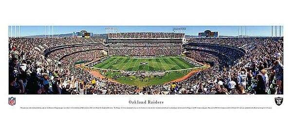 NFL 50 Yard Line Unframed Panorama by Blakeway Worldwide Panoramas, Inc