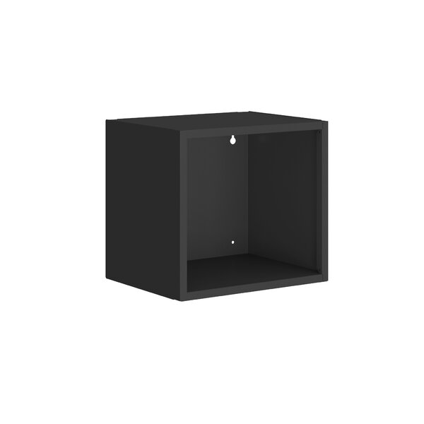 Raulston Cube Display Floating Shelf by Ebern Designs