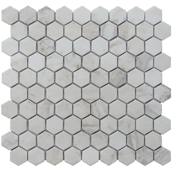Hexagon 12 x 12.5 Carrara Natural Stone Blend Mosaic Tile in White by Intrend Tile