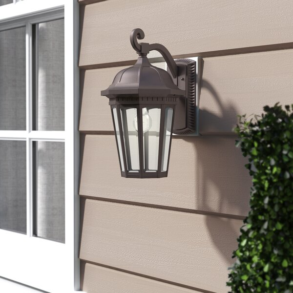 Goodrich 1-Light Outdoor Wall Lantern by Alcott Hill