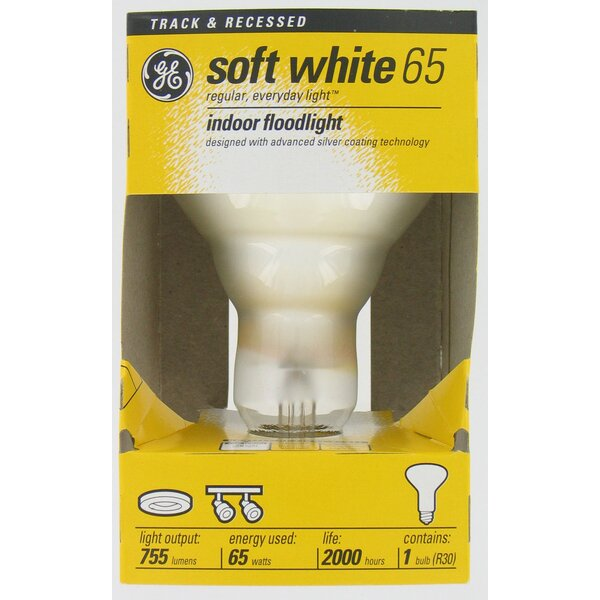 Frosted Flood Incandescent Light Bulb by GE Lighting
