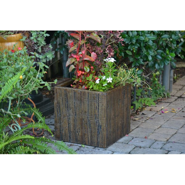 Cube Driftwood Pot Planter by MPG Planters