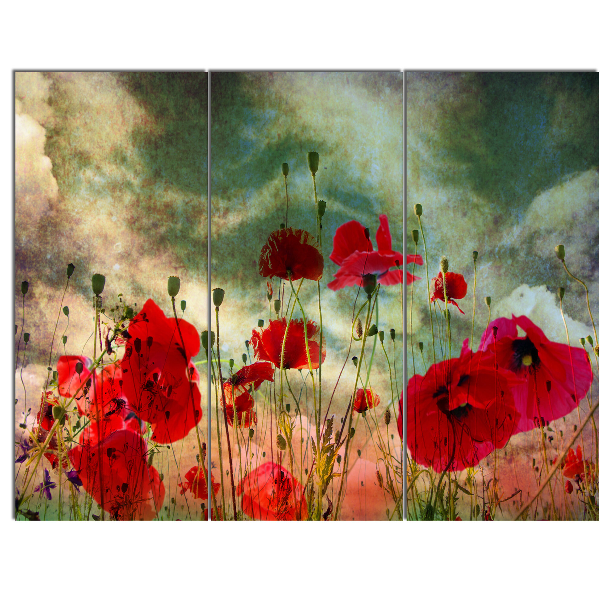 Floral Poppies Flowers  MULTI CANVAS WALL ART Picture Print VA