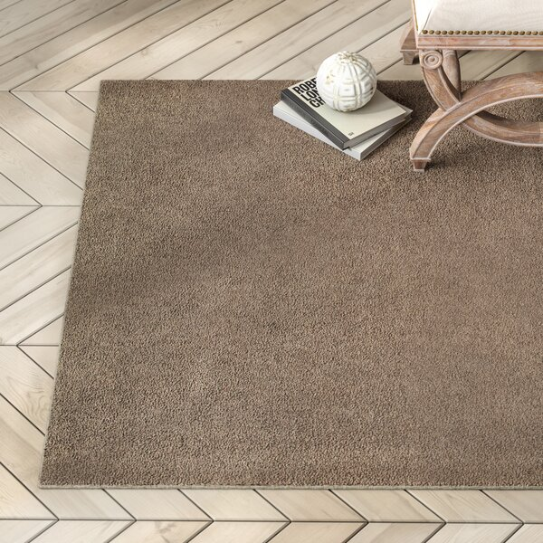 Battlefield Brown Indoor/Outdoor Area Rug by Greyleigh