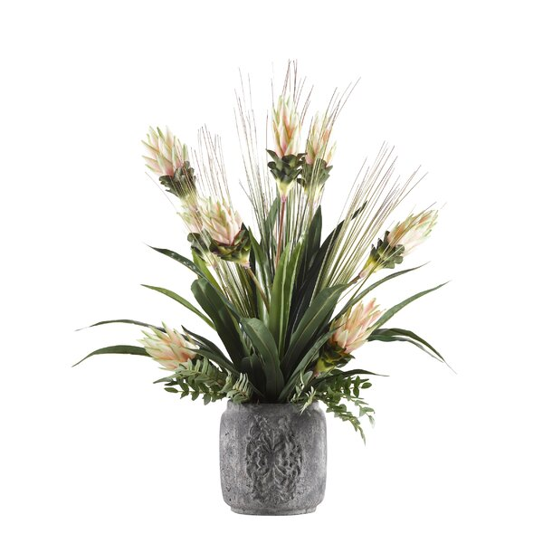 Blooming Bromeliad Floral Arrangement in Cement Planter by One Allium Way