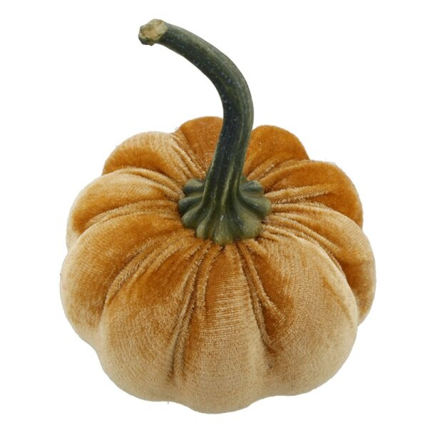 Hard Velvet Pumpkin Decorative Accent by The Holiday Aisle