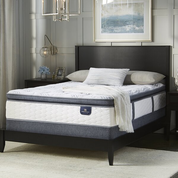 Perfect Sleeper 12 Plush Pillow Top Mattress by Serta