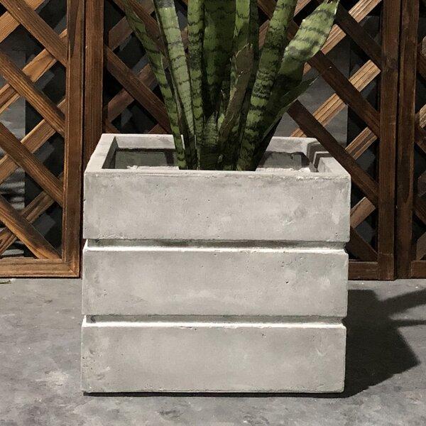 Friend Crate Square Planter Box by Williston Forge