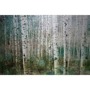 'Aspen Green' by Parvez Taj Painting Print on Brushed Aluminum by Parvez Taj