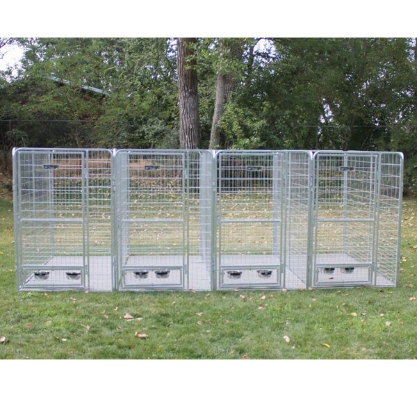 Arielle 4 Dog Galvanized Steel Yard Kennel by Tucker Murphy Pet