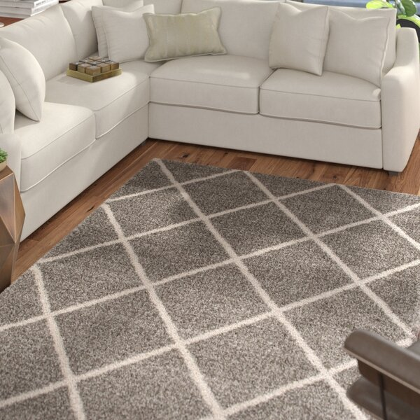 Kalypso Gray Area Rug by Mercury Row