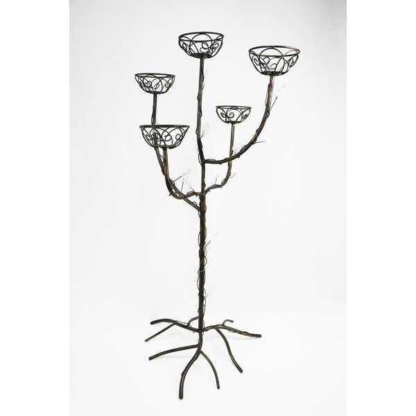Metal Tree Glass Candelabra by Fleur De Lis Living