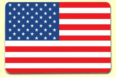 American Flag Placemat (Set of 4) by Painless Learning Placemats