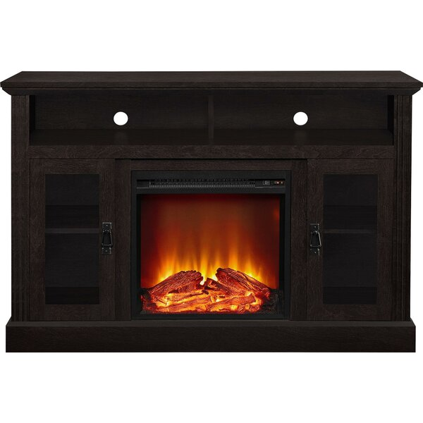 Rosier 47 TV Stand with Electric Fireplace by Darb