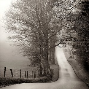 Cades Cove by Nicholas Bell Photographic Print on Canvas by Printfinders