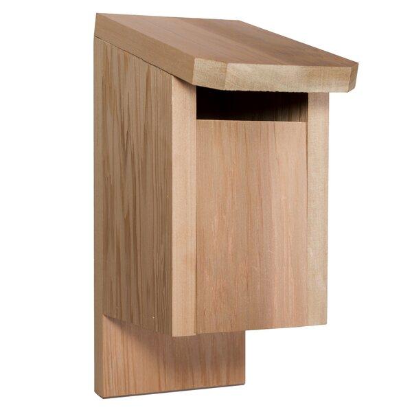 Western Red Cedar 8.5 in x 7.5 in x 7.5 in Birdhouse by All Things Cedar