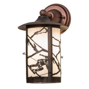 Bargain Zeringue Outdoor Wall Lantern By Loon Peak