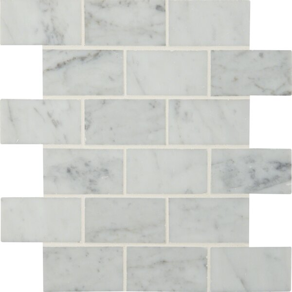 Carrara Polished 2 x 4 Marble Mosaic Tile in White by MSI