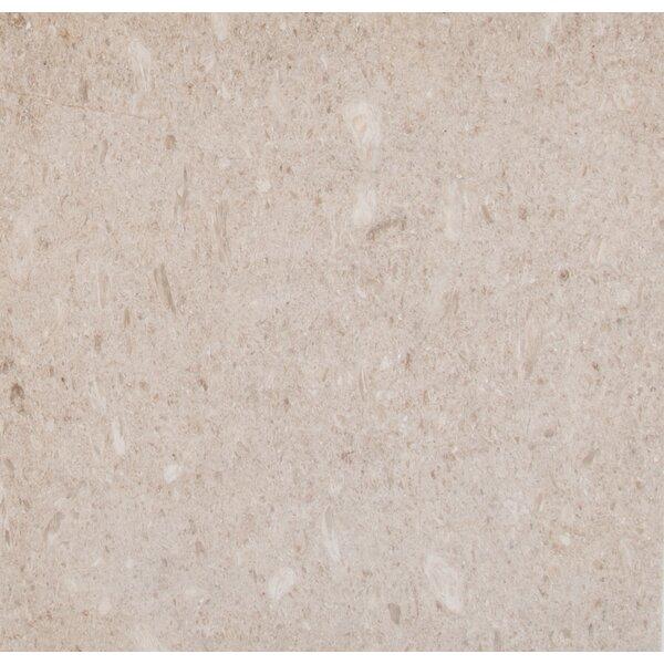Coastal 18 x 18 Limestone Field Tile in Beige by MSI