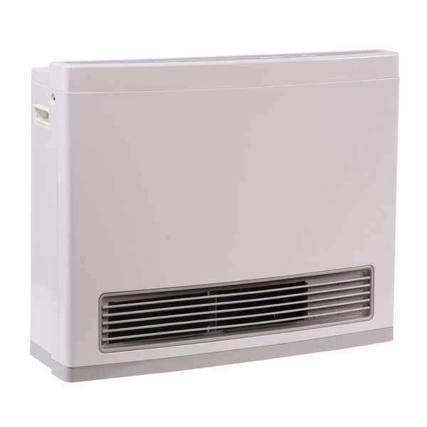 R Series 24,000 BTU Electric/Natural Gas Fan Wall Insert Heater by Rinnai