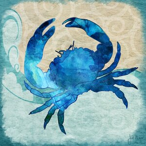 'Crab' by Jill Meyer Graphic Art on Wrapped Canvas by Buy Art For Less