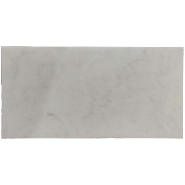 Alps Polished 12 x 24 Marble Field Tile