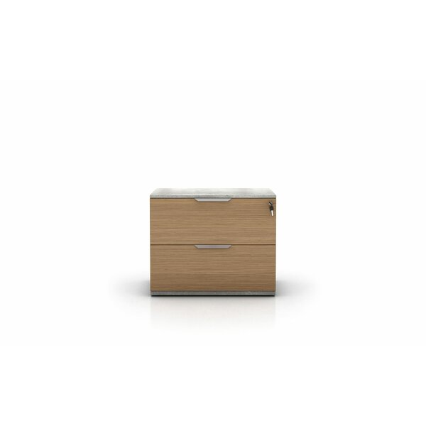Raylee 2 Drawer Lateral Filing Cabinet