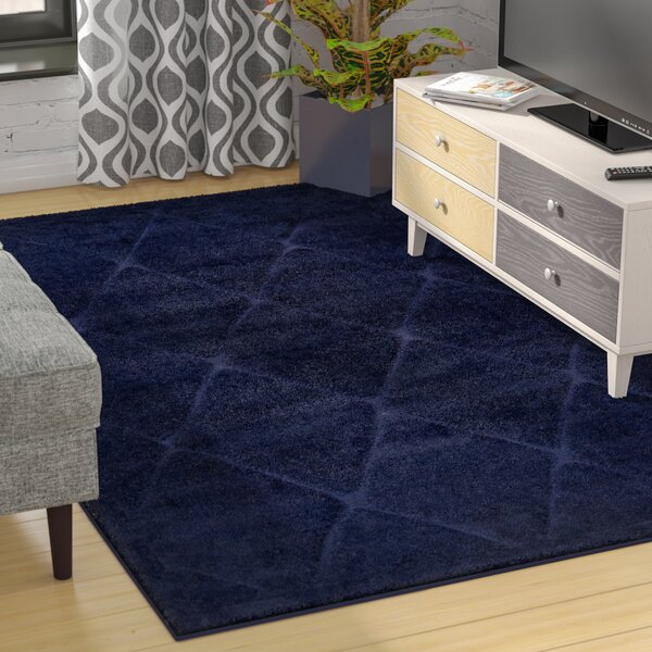 Salgado Navy Blue Shag Area Rug by Zipcode Design